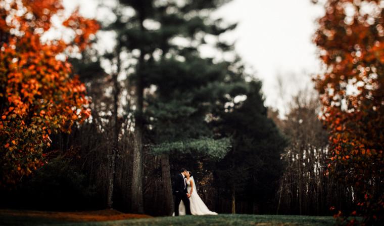 brigalias wedding twisted oaks studio photography