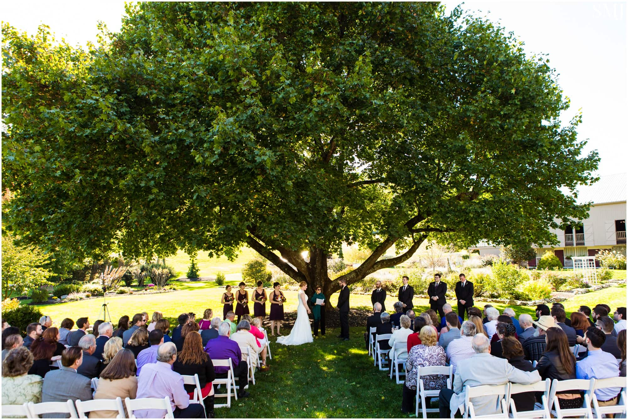 beech springs farm wedding smj photography